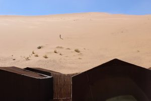 hohe Düne Sahara